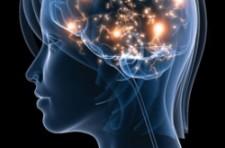 air pollution in the brain
